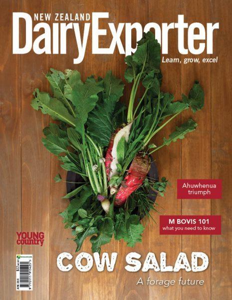 DXP COVER