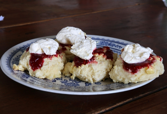 The Best Scones Nz Farm Life Media Down To Earth