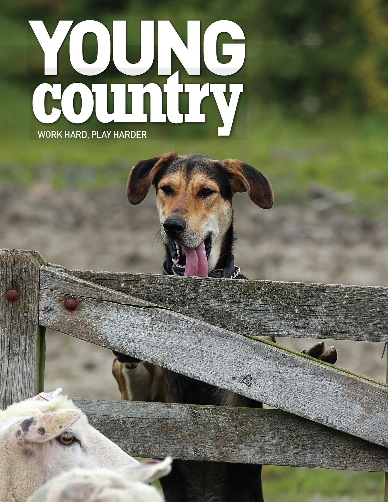 magazine cover young country mock