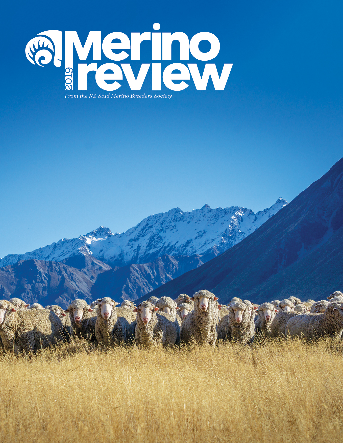 MerinoReview2019Cover