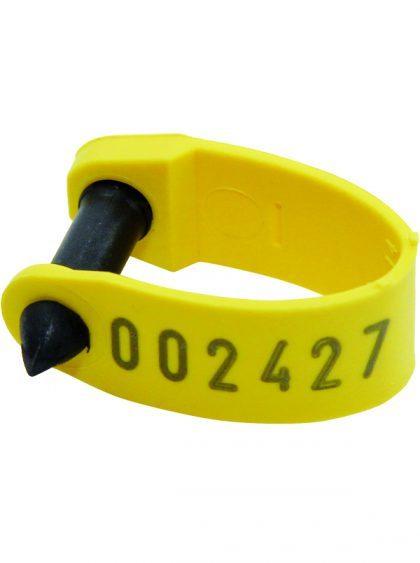 RapID-tags-5-600x804-1-420x563